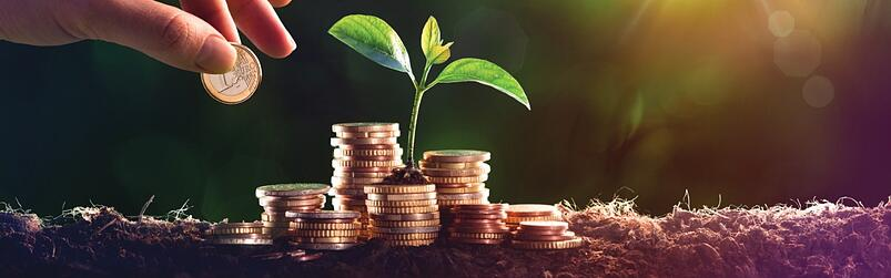Sustainable investing: Common myths and misconceptions - Part 2
