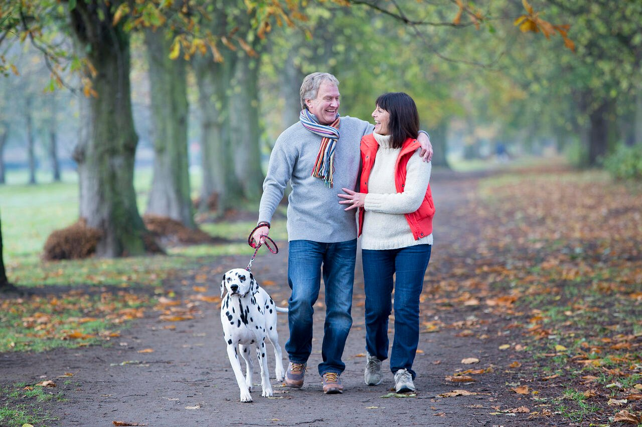 A mature couple walk through a woodland area smiling and laughing to one another while they walk their dalmatian dog. They are wrapped up warm on a cold Autumn day.
